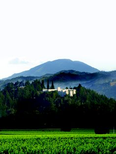 Sterling Vineyards, Architecture and Landscapes, San Francisco | Napa Valley 2012, Best Of Wine Tourism