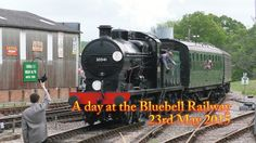 A Day at the Bluebell