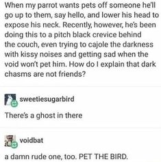 When my parrot wants pets off someone he'll go up to them, say hello, and lower his head to expose his neck. Recently, however, he's been doing this to a pitch black crevice behind the couch, even trying to cajole the darkness with kissy noises and getting sad when the void won't pet him. How do I explain that dark chasms are not friends? - iFunny :)