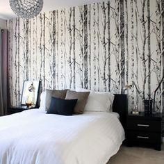 Google Image Result for http://st.houzz.com/fimages/305223_9377-w394-h394-b0-p0--contemporary-bedroom.jpg