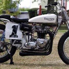 triumph t100 flat tracker | Triumph Flat Tracker