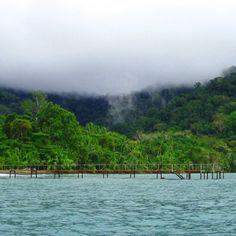 A little #rainforest fog over the Osa Peninsula coastline- ??at Playa Nicuesa Lodge @nicuesalodge