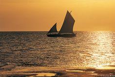 Iles Kerkennah - 25- Traditions maritimes | Le lûd (loude), … | Flickr