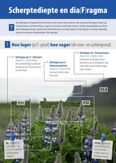 Aanbieding! Infographic, Infographics, Visual Schedules