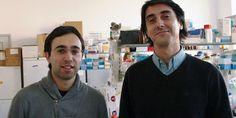 """Portugueses criam """"nanoarma"""" para tratar cancro da mama sem cura"""