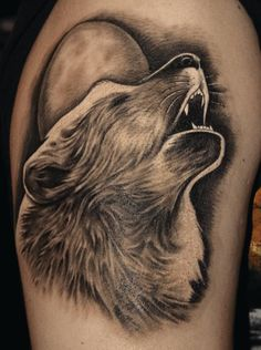 Wolf von Sjard aus der Trioxin Gallery, Frankfurt