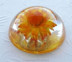 Helipterum paperweight Small yellow table by CreationsOfTrueFairy