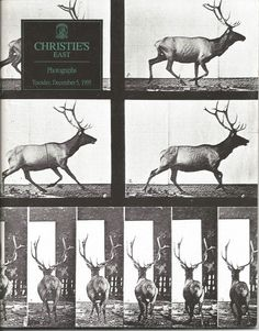 Christie's East Auction Catalog of Photographs December 5th, 1995