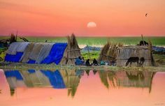 Iraqi Marshes