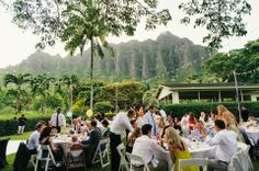 Zig Zag of cafe lights over guest tables for a tent less event at Kualoa Ranch