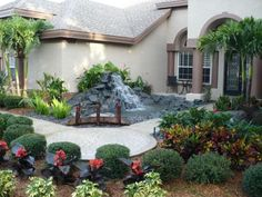James likes these plants (colors, spacing) for backyard without water feature