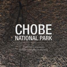 Arriving at Chobe National Park, Botswana. #Africa #Travel #safari