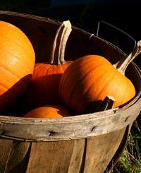 Foods We Love: Pumpkins
