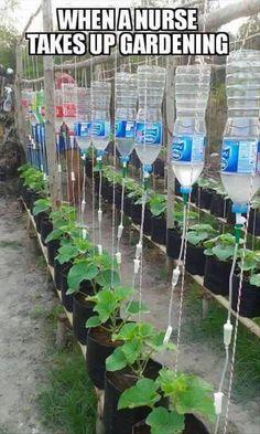"""""""when a nurse takes up gardening..."""" meme / humorous photo...Single Dad Laughing FB"""
