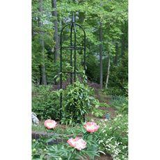 Garden Obelisk - Bed Bath & Beyond