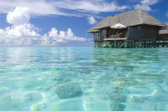 #travel #exotic #luxury