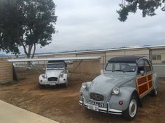 PuristSPro - Mehari at our local park 1955 English Slough 2CV at my house 1970 DS Wagon in the desert of Southern California Two of ours - Charleston and 2CV Special Va