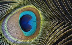 абстрактная живопись бирюза: 10 тыс изображений найдено в Яндекс.Картинках