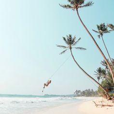 Das angesagteste Reiseziel derzeit heißt Sri Lanka. Höchste Zeit also, das faszinierende Land genauer unter die Lupe zu nehmen.