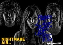 Plisskën Festival 2014 Nightmare Air