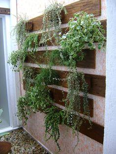 Jardines de estilo rústico por MC3 Arquitetura . Paisagismo . Interiores https://www.homify.com.mx/libros_de_ideas/4740833/jardin-vertical-en-casa-18-ideas-geniales
