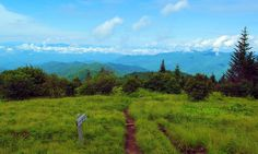 Hike on Andrew's Bald in the Great Smoky Mountains National Park