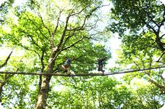 'Tree-canopy' treehouses by Treehouse Life - A walk in the woods with Treehouse…