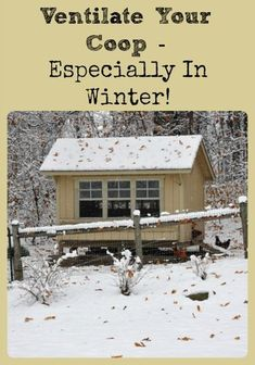 Describes why it's important to keep chicken coops well ventilated (even in winter) and how much ventilation is proper using windows, holes, or fans. Raising Backyard Chickens, Backyard Chicken Coops, Chicken Coop Plans, Keeping Chickens, Building A Chicken Coop, Diy Chicken Coop, Backyard Farming, Chicken Tractors, Chicken Feeders