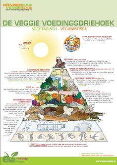 Veggie voedingsdriehoek - www.evavzw.be