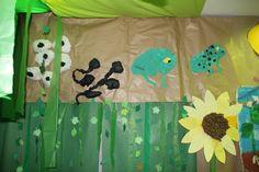 Life cycle of a frog. Cicle de vida d'una granota.