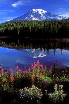 ✮ Mt Ranier and Reflection Lake