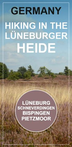 LÜNEBURGER HEIDE, GERMANY - hiking in the pink heath fields, visiting the parks, villages and towns near by