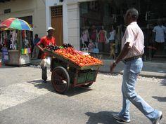 Very fresh tomatoes and eggplants, Cartagena