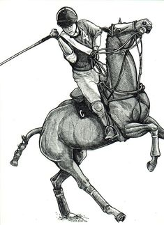 52feefe577c8 POLO PONY extreme Game Horse Art