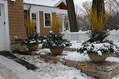 winter containers with eucalyptus, Deborah Silver, Detroit Garden Works, Branch Studio