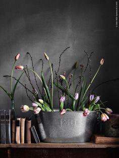 Hello, March! / livethemma ikea