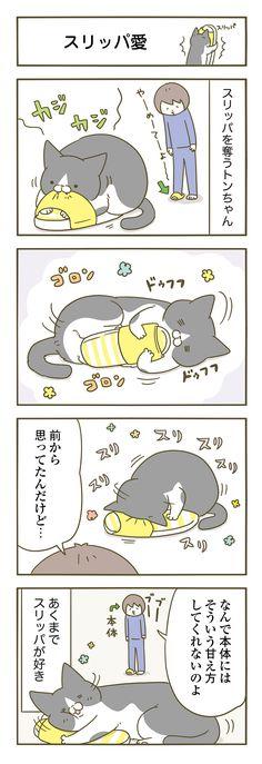 【期間限定】シリーズ22万部突破記念・リバイバル連載!【毎日更新】 箱に詰まる、顔にお尻をつけてくる、 ハムをあげないとすねる、夜中にじっと見つめてくる… 2匹のネコ、トンちゃんとシノさんのかわいい仕草に癒される アメブロ猫ランキング第1位の大人気猫マンガが描きおろし連載! ☆モフモフな二匹が出会って3年目。大好評シリーズ最新刊が絶賛発売中! →ご購入はコチラ←
