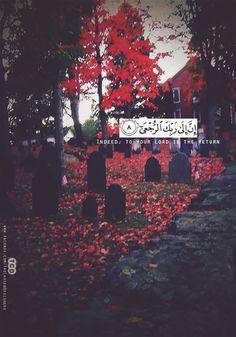 DesertRose,;,Qur'an Kareem,;, Quran Pak, Islam Quran, Islam Muslim, Allah Quotes, Quran Quotes, Wisdom Quotes, Islamic Qoutes, Muslim Quotes, Religious Text