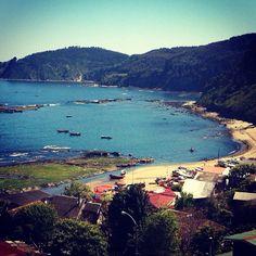 Caleta Chica Cocholgüe -Tomé