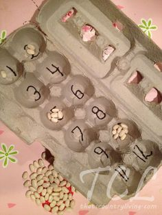 Counting with egg cartons. You can use beans, gems,  seeds, 2 sided counters, etc.