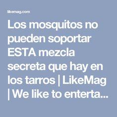 Los mosquitos no pueden soportar ESTA mezcla secreta que hay en los tarros | LikeMag | We like to entertain you