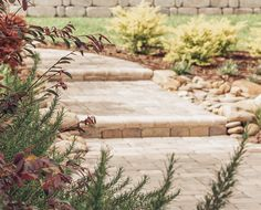 NeSmith offers outdoor services ranging from landscape design, hardscapes, drainage solutions, paver restoration, outdoor lighting, and irrigation.
