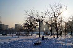Януарско слънце, сняг и студ