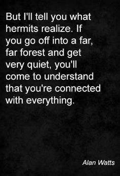 But I'll tell you what hermits realize. If you go off into a far, far forest and get very quiet, you'll come to understand that you're connected with everything. Alan Watts