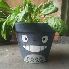my totoro pot's got a spinach hairdo. Painted Plant Pots, Painted Flower Pots, Disney Diy Crafts, Flower Pot Art, Nerd Crafts, House Plant Care, Clay Pot Crafts, Plant Art, Pottery Painting