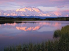Visitors to Denali encounter over 6 million acres of shimmering lakes and jagged mountains, including Mount McKinley, North America's tallest peak. It's a 5-hour drive from Anchorage to Denali along Interstate A-4