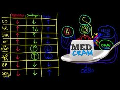 Understand shock (cardiogenic, hypovolemic, and septic) with this clear explanation from Dr. Roger Seheult.     MedCram: Medical Topics Explained Clearly by World-Class Instructors    RECOMMENDED AUDIENCE: Health care professionals and students. Review for USMLE, MCAT, PANCE, NCLEX, school and board examinations.    Produced by Kyle Allred PA-C
