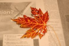 Waxing leaves - a great fall activity and decoration