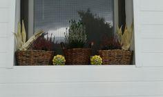 Podzimní okno