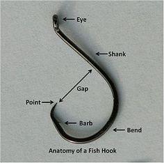 Fish hook - Wikipedia